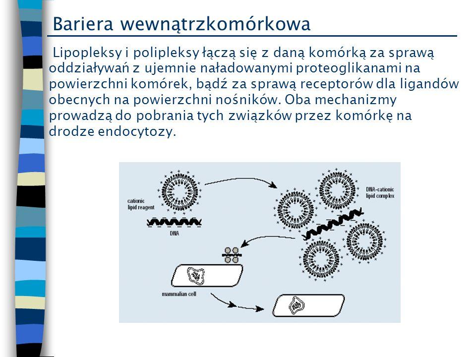 Bariera wewnątrzkomórkowa