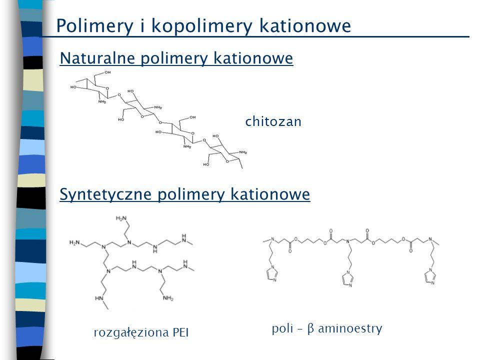 Polimery i kopolimery kationowe