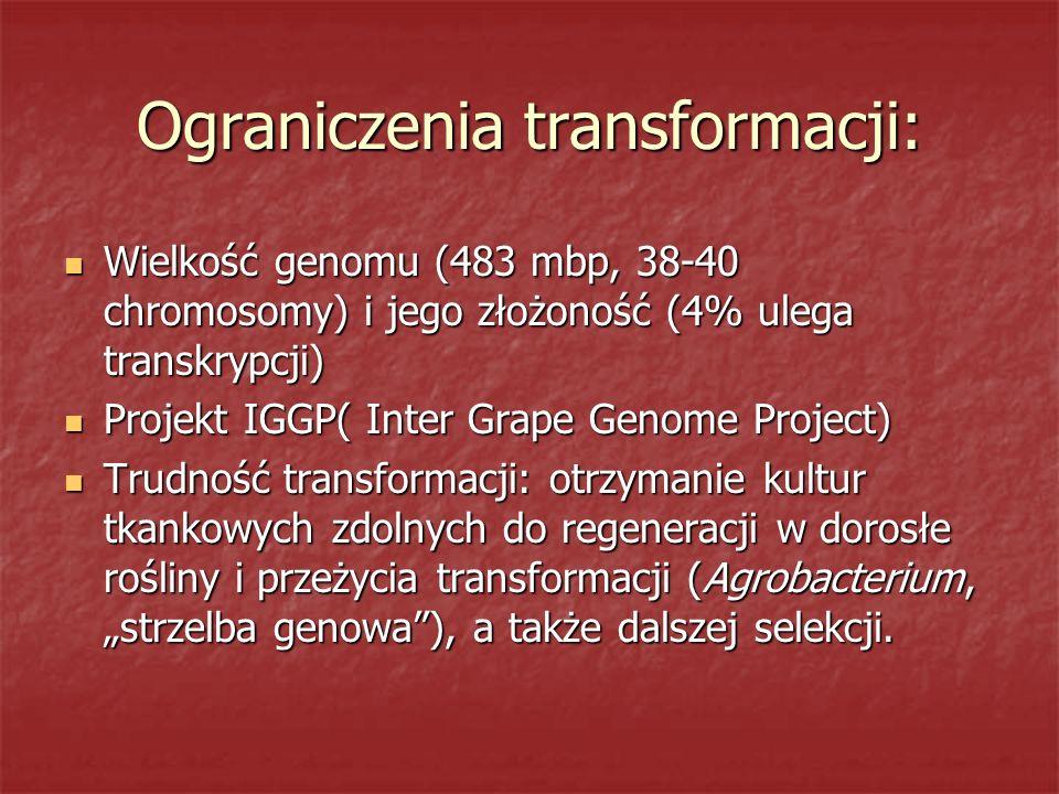 Ograniczenia transformacji: