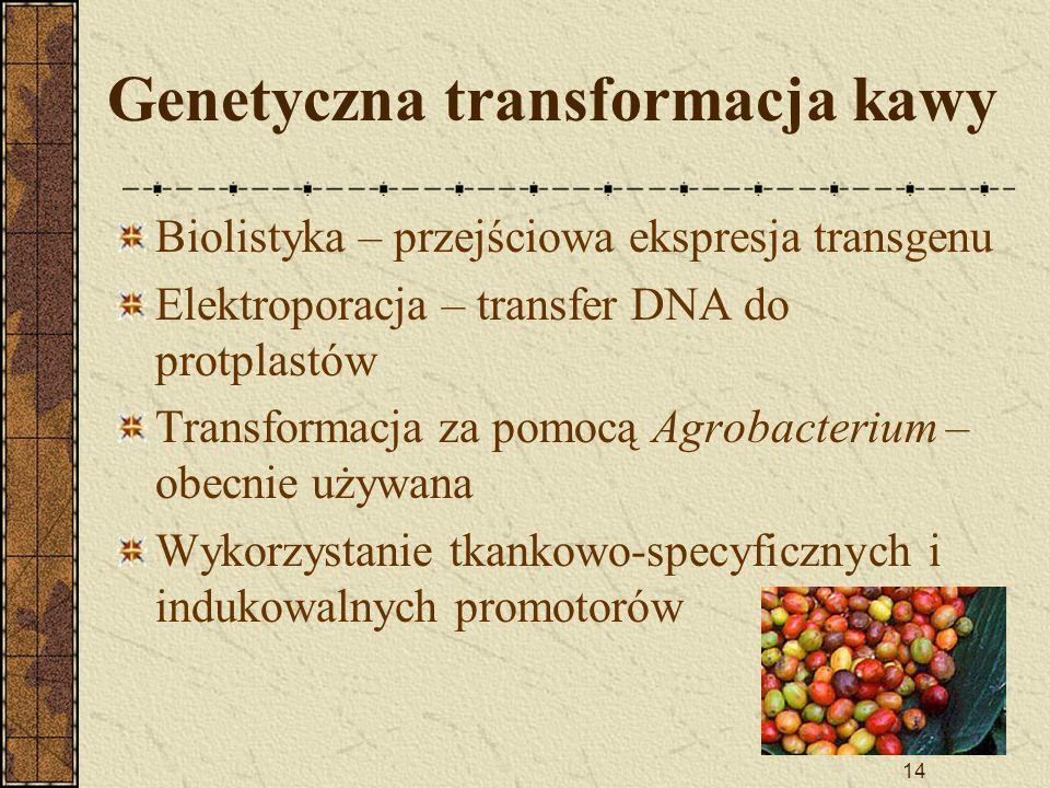 Genetyczna transformacja kawy