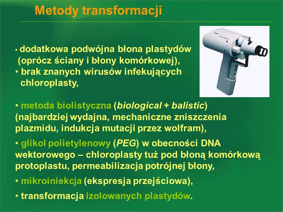 Metody transformacji (oprócz ściany i błony komórkowej),