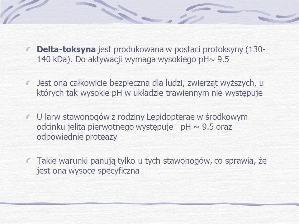 Delta-toksyna jest produkowana w postaci protoksyny (130-140 kDa)