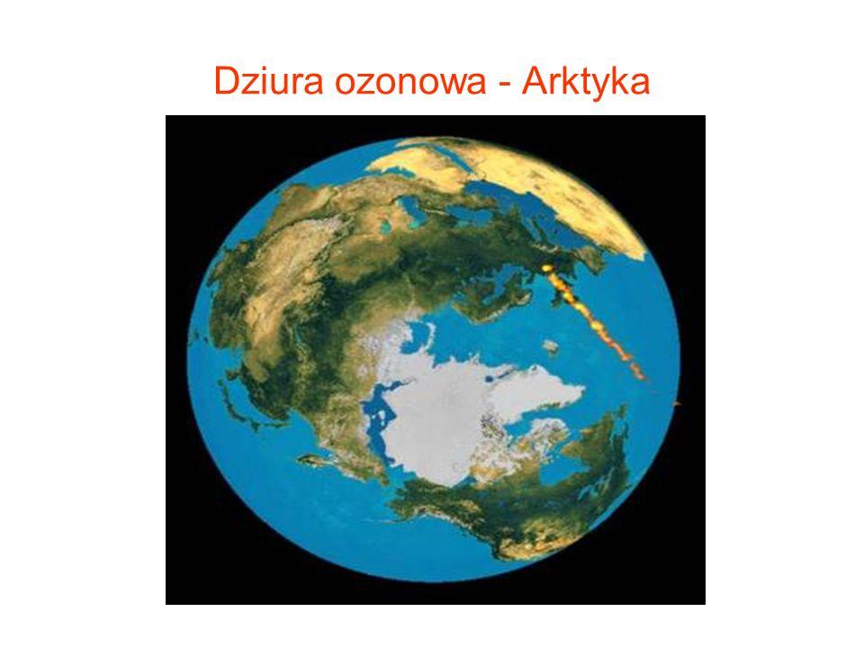 Dziura ozonowa - Arktyka