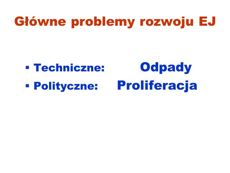 Główne problemy rozwoju EJ