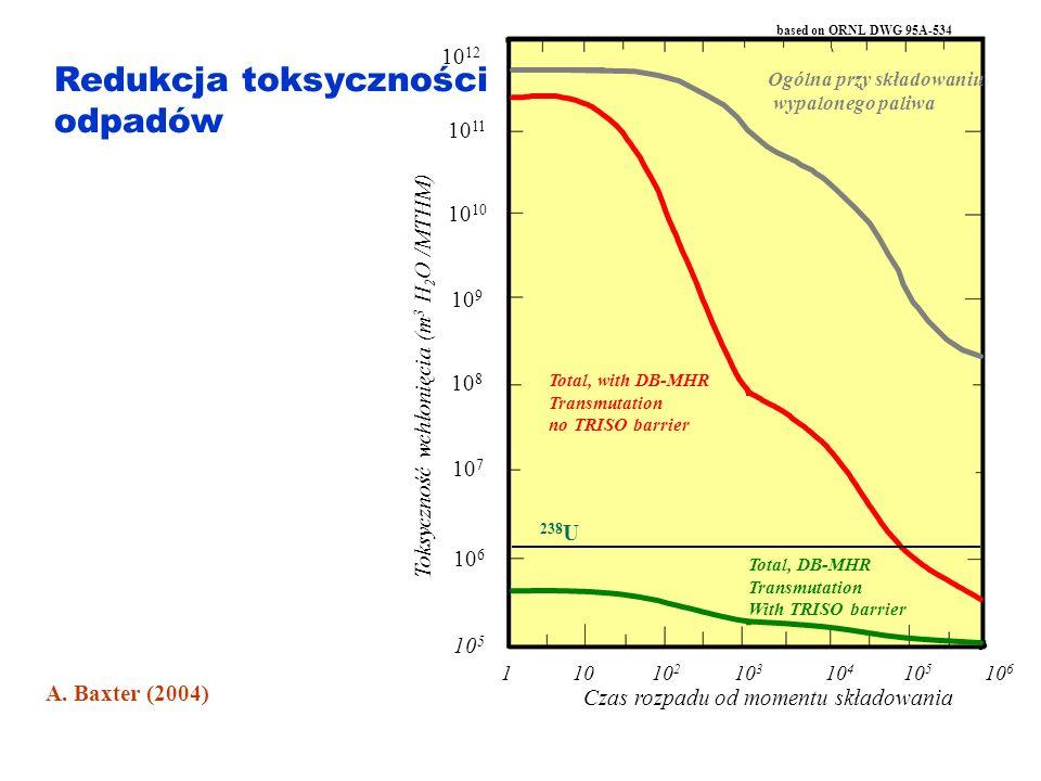 Redukcja toksyczności odpadów