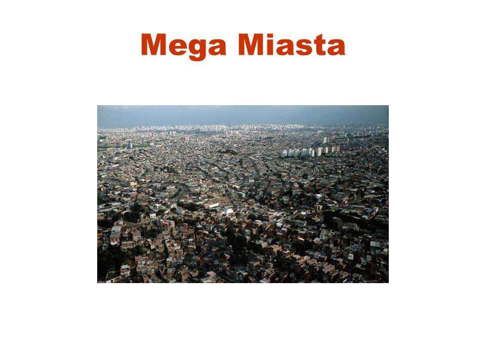 Mega Miasta