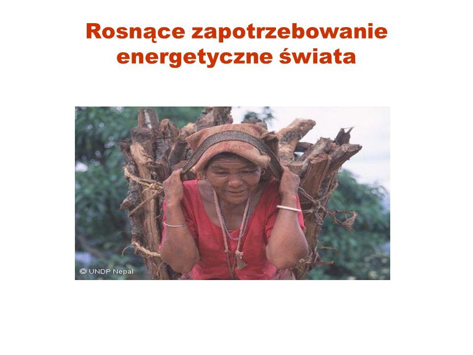 Rosnące zapotrzebowanie energetyczne świata