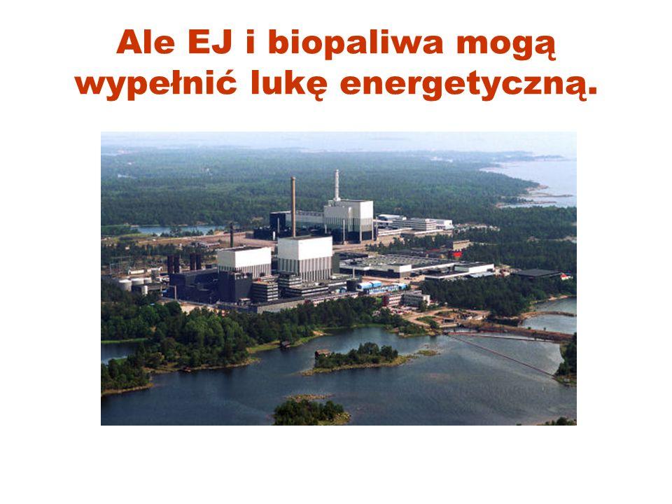 Ale EJ i biopaliwa mogą wypełnić lukę energetyczną.