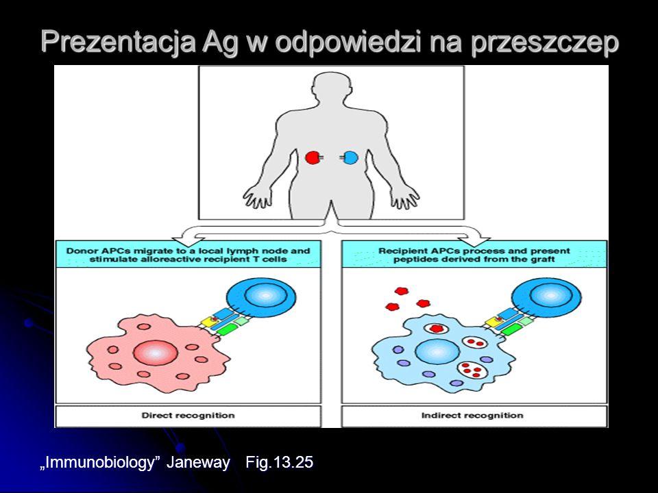 Prezentacja Ag w odpowiedzi na przeszczep