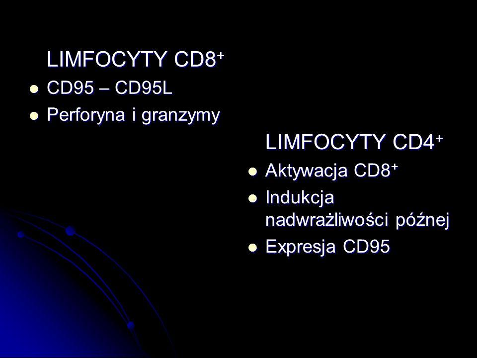 LIMFOCYTY CD8+CD95 – CD95L. Perforyna i granzymy. LIMFOCYTY CD4+ Aktywacja CD8+ Indukcja nadwrażliwości późnej.