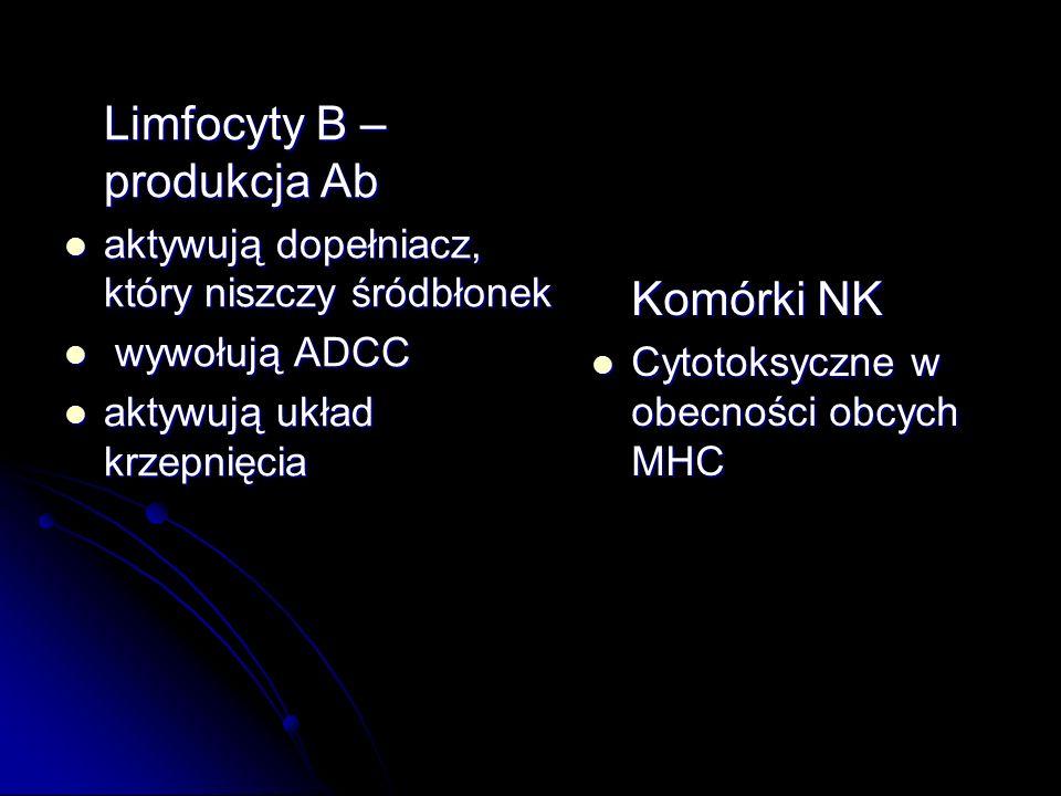 Limfocyty B – produkcja Ab
