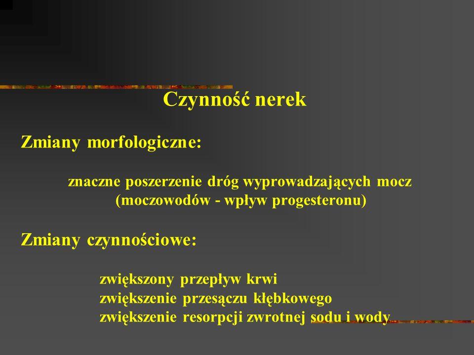 Czynność nerek Zmiany morfologiczne: