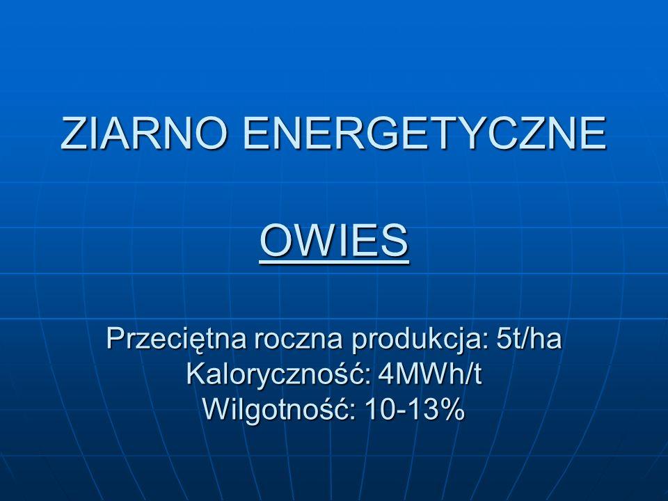 ZIARNO ENERGETYCZNE OWIES Przeciętna roczna produkcja: 5t/ha Kaloryczność: 4MWh/t Wilgotność: 10-13%