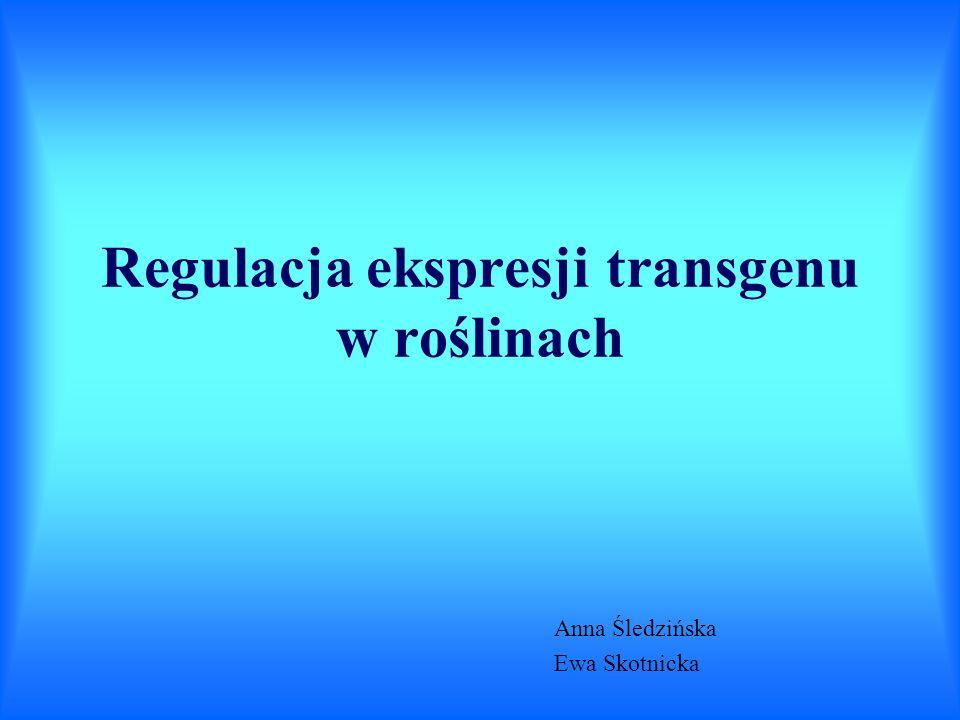 Regulacja ekspresji transgenu w roślinach