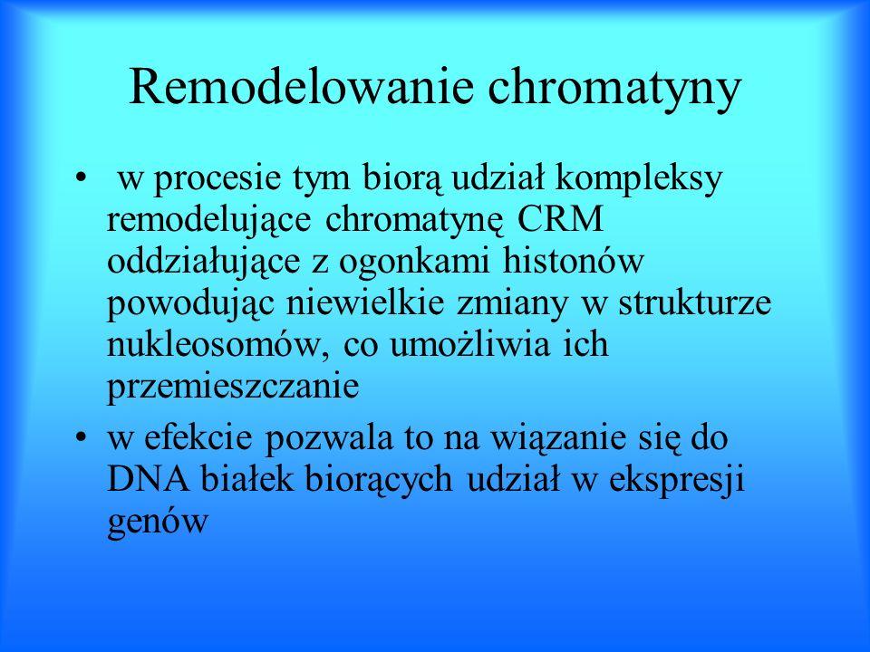 Remodelowanie chromatyny