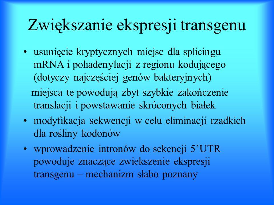 Zwiększanie ekspresji transgenu