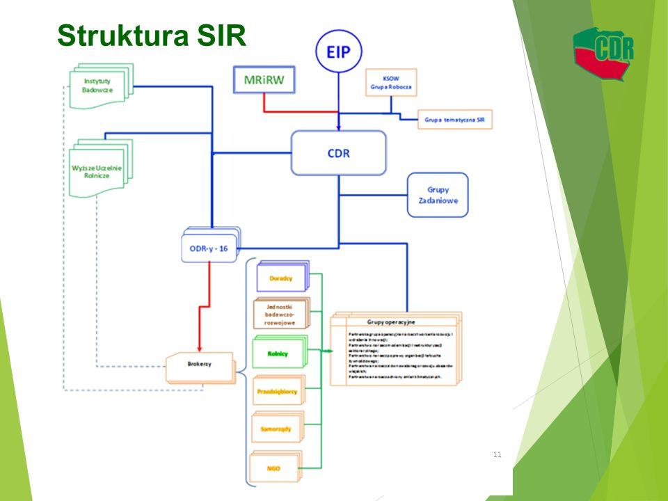 Struktura SIR