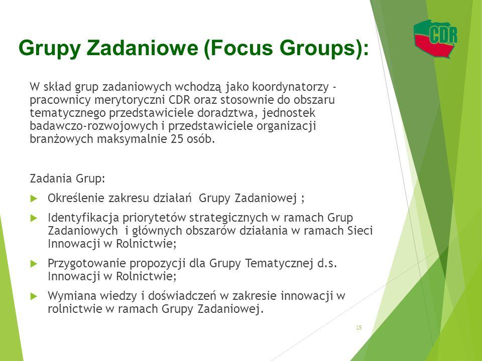 Grupy Zadaniowe (Focus Groups):