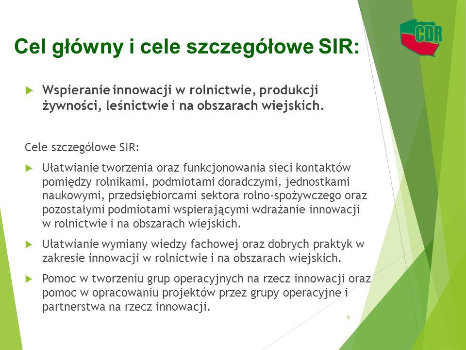 Cel główny i cele szczegółowe SIR: