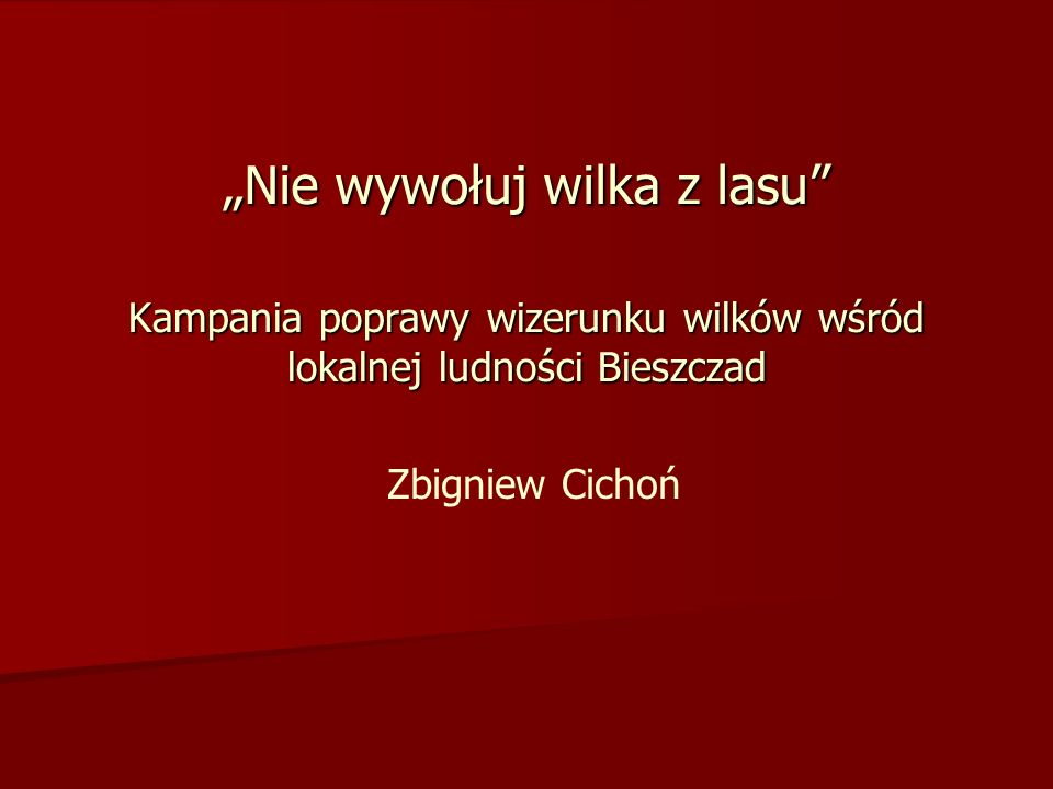 Kampania poprawy wizerunku wilków wśród lokalnej ludności Bieszczad