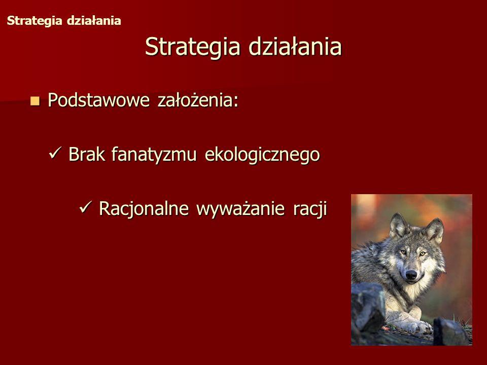Strategia działania Podstawowe założenia: