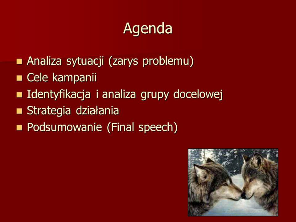 Agenda Analiza sytuacji (zarys problemu) Cele kampanii