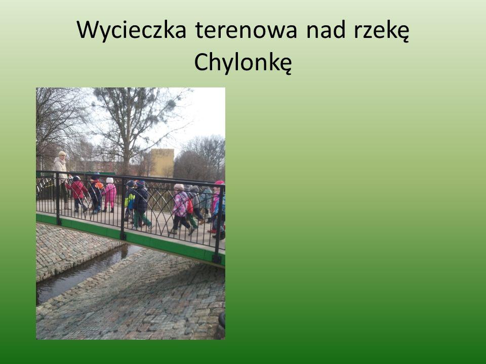 Wycieczka terenowa nad rzekę Chylonkę