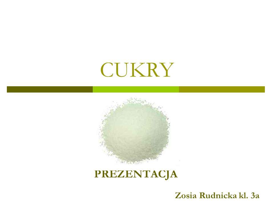 PREZENTACJA Zosia Rudnicka kl. 3a