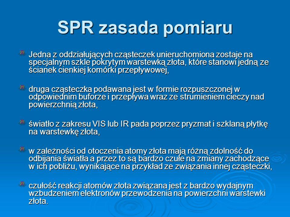 SPR zasada pomiaru