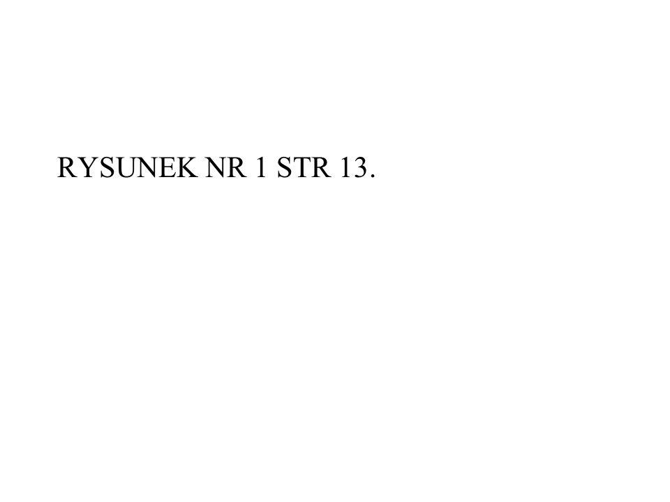 RYSUNEK NR 1 STR 13.