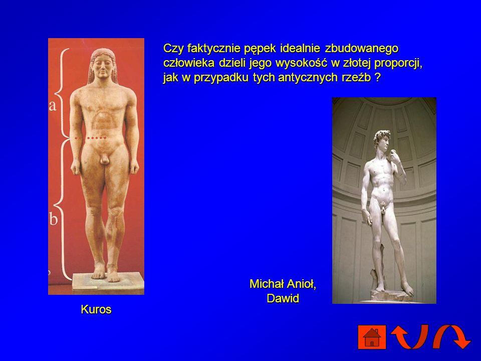 Kuros Czy faktycznie pępek idealnie zbudowanego człowieka dzieli jego wysokość w złotej proporcji, jak w przypadku tych antycznych rzeźb