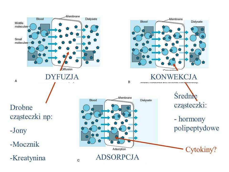 DYFUZJAKONWEKCJA. Średnie cząsteczki: - hormony polipeptydowe. Drobne cząsteczki np: Jony. Mocznik.