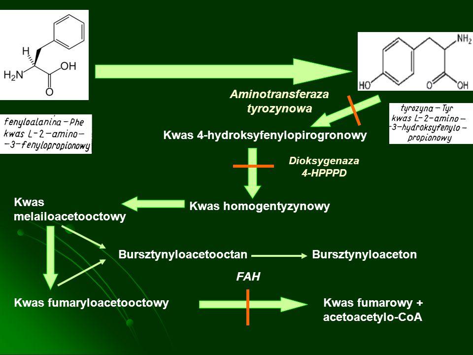 Aminotransferaza tyrozynowa