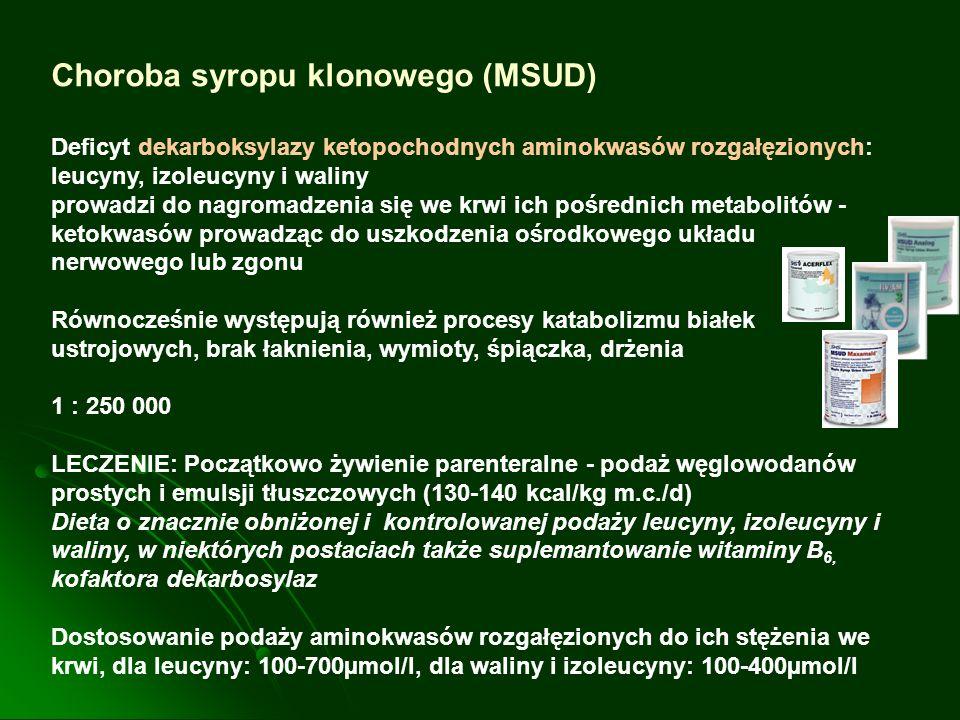Choroba syropu klonowego (MSUD)