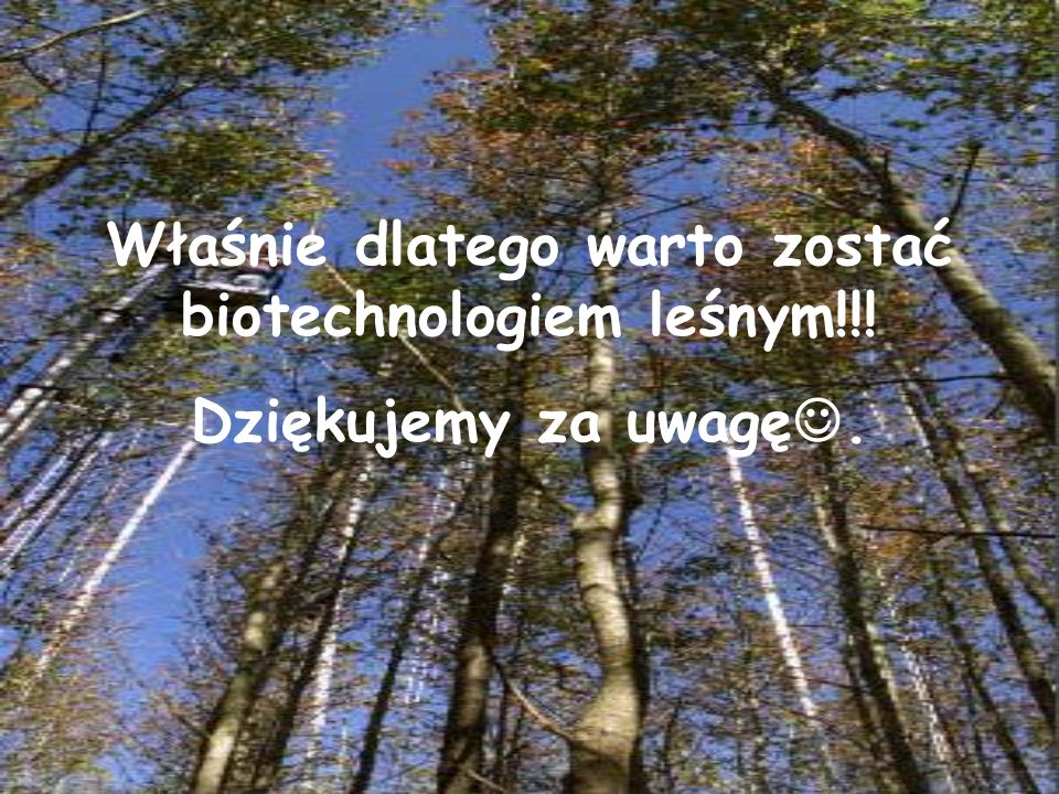 Właśnie dlatego warto zostać biotechnologiem leśnym!!!