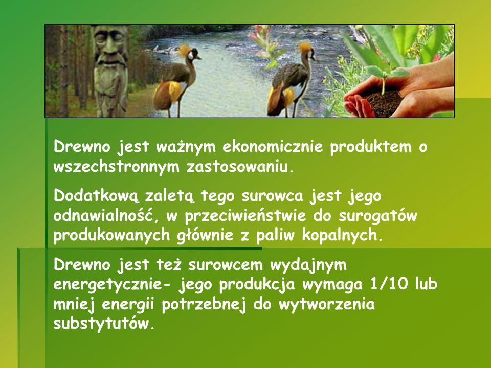 Drewno jest ważnym ekonomicznie produktem o wszechstronnym zastosowaniu.