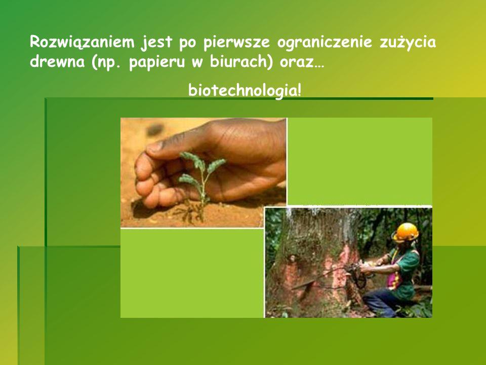 Rozwiązaniem jest po pierwsze ograniczenie zużycia drewna (np