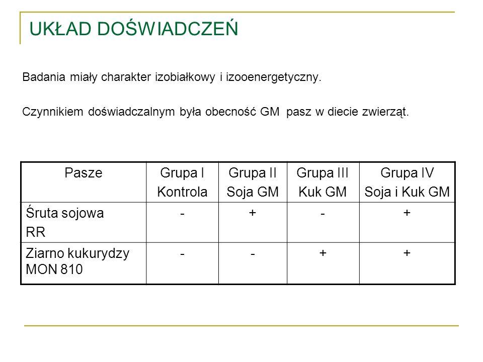 UKŁAD DOŚWIADCZEŃ Pasze Grupa I Kontrola Grupa II Soja GM Grupa III