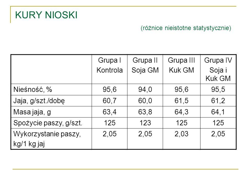 KURY NIOSKI (różnice nieistotne statystycznie)