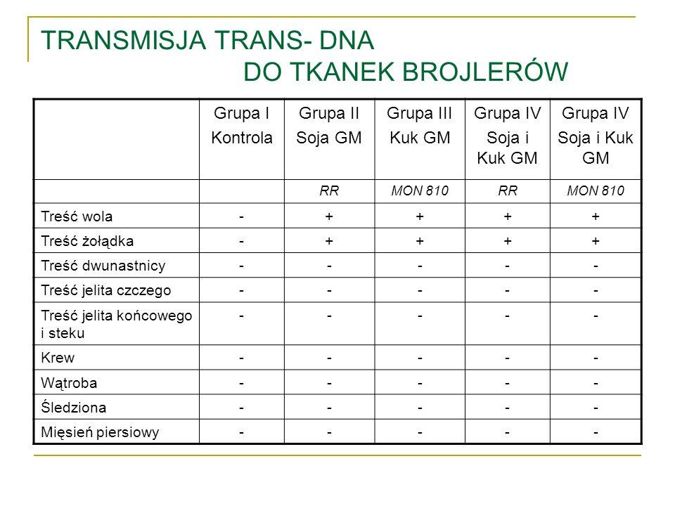 TRANSMISJA TRANS- DNA DO TKANEK BROJLERÓW
