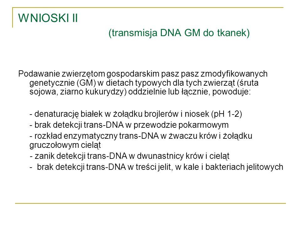 WNIOSKI II (transmisja DNA GM do tkanek)