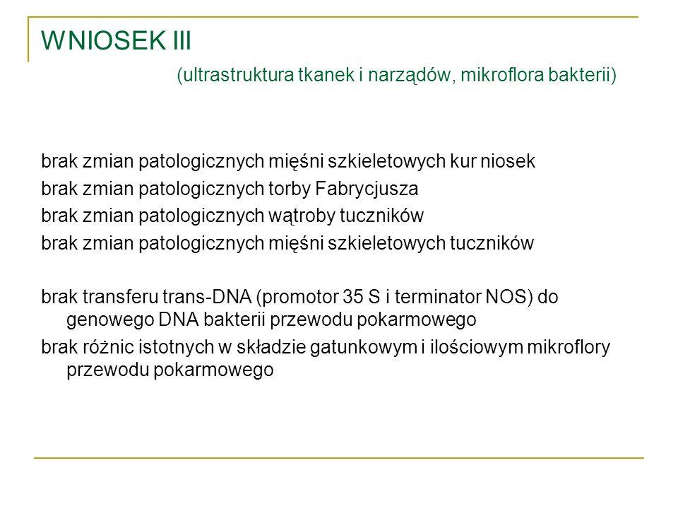 WNIOSEK III (ultrastruktura tkanek i narządów, mikroflora bakterii)