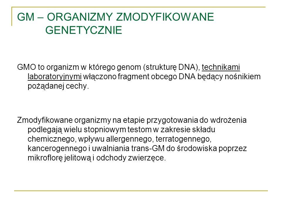 GM – ORGANIZMY ZMODYFIKOWANE GENETYCZNIE