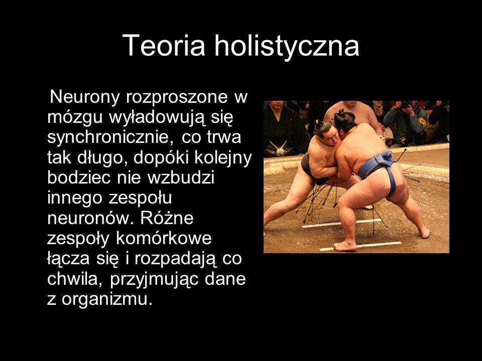 Teoria holistyczna