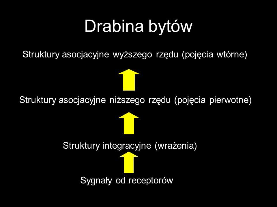 Drabina bytów Struktury asocjacyjne wyższego rzędu (pojęcia wtórne)