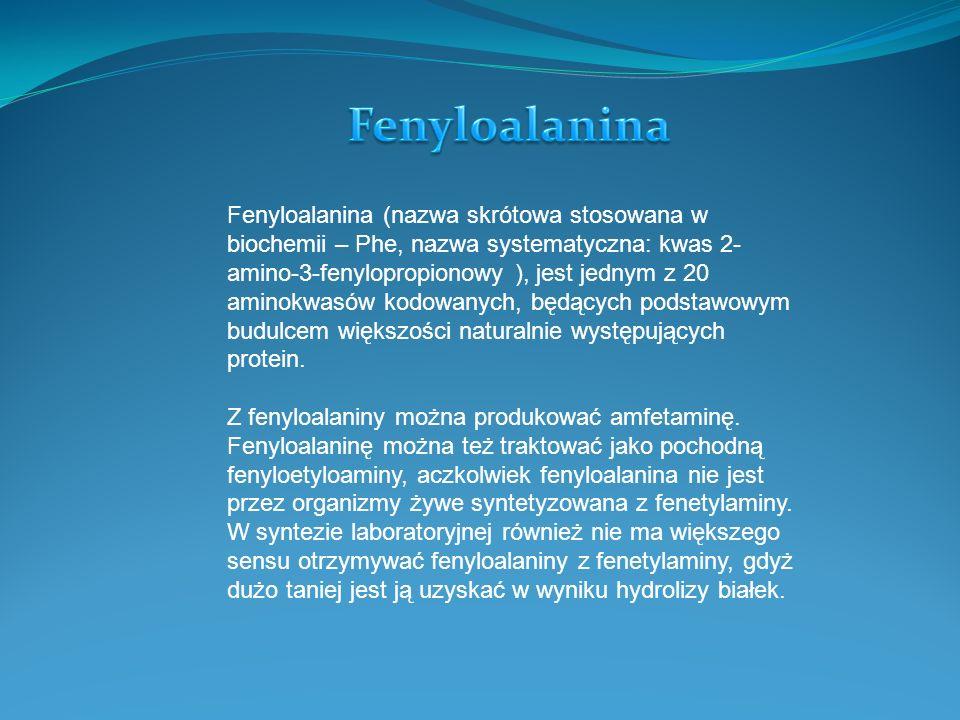 Fenyloalanina