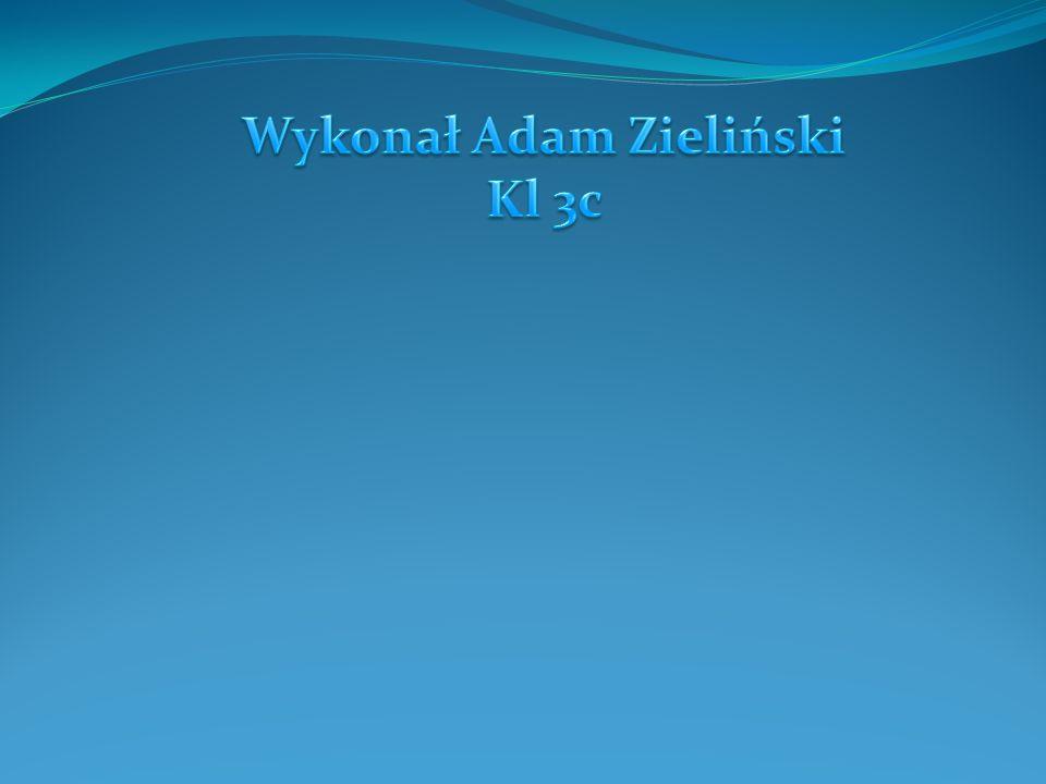 Wykonał Adam Zieliński