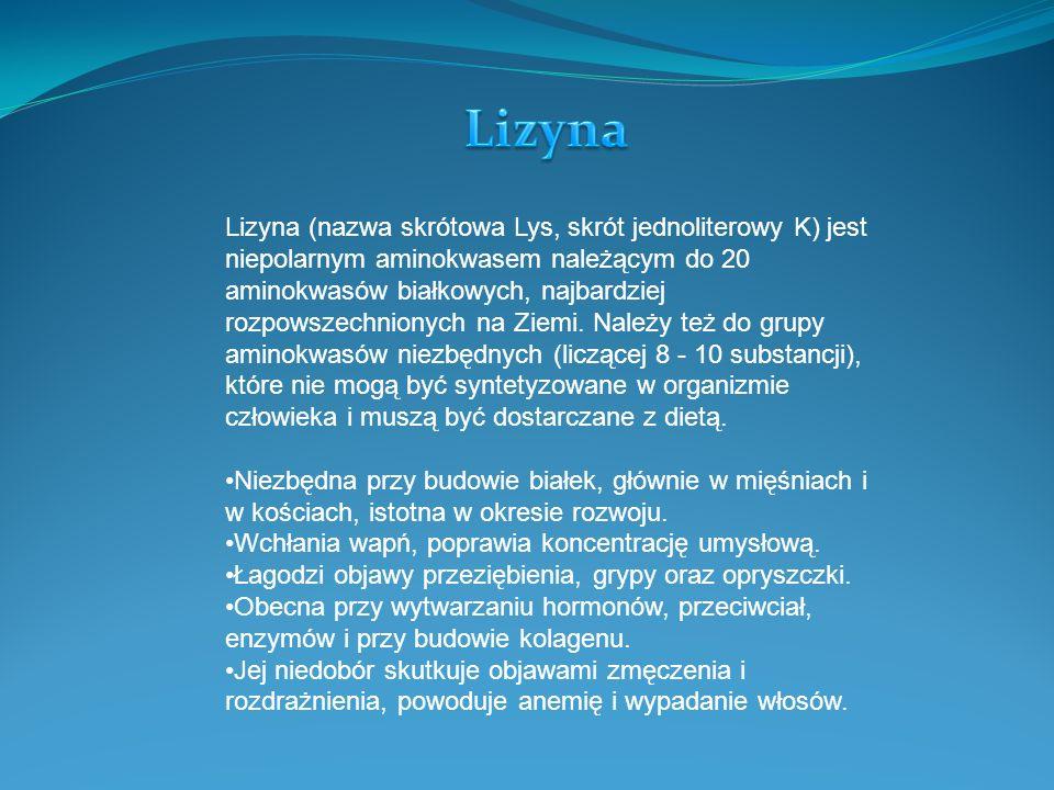 Lizyna