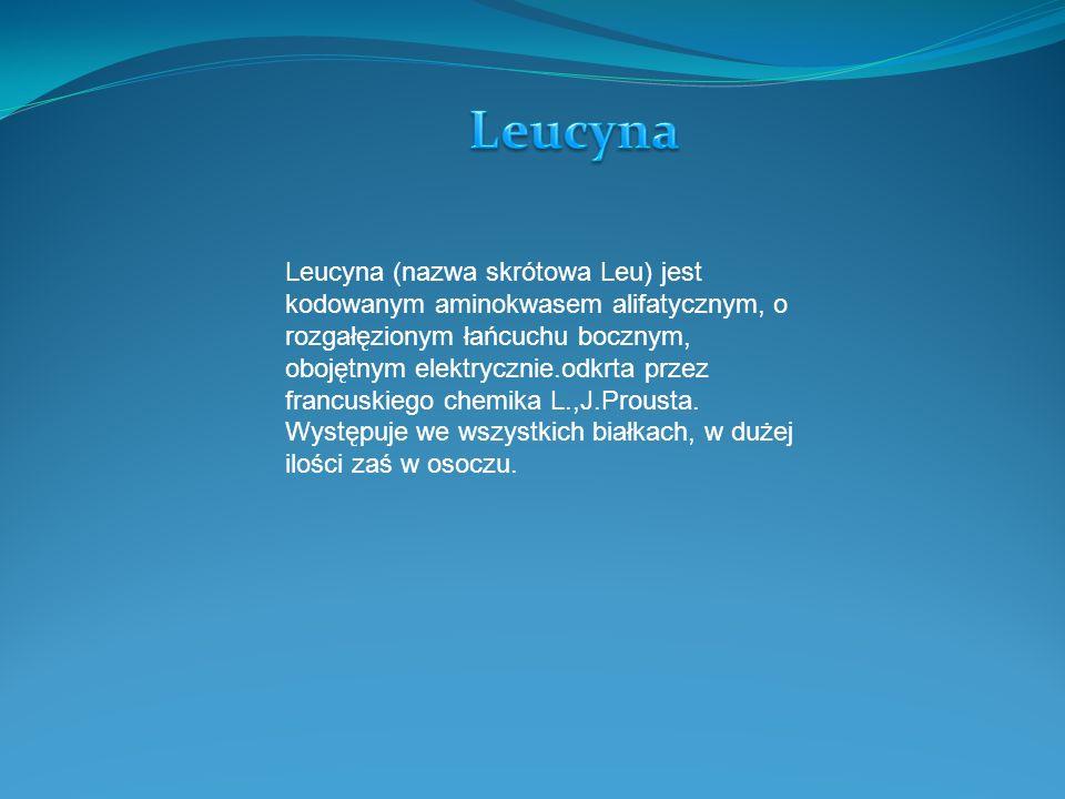 Leucyna