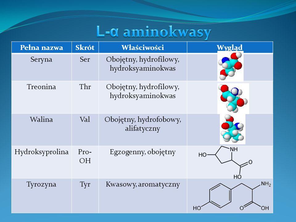 L-α aminokwasy Pełna nazwa Skrót Właściwości Wygląd Seryna Ser